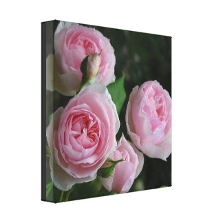 Bohemian Pink Roses Flowers Nature Chic Canvas
