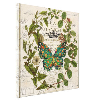 bohemian scripts french botanical butterfly canvas print