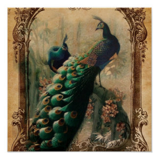 boho floral french country modern vintage peacock poster
