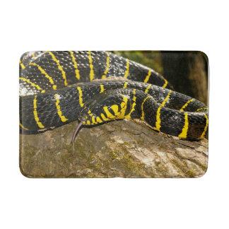 Boiga dendrophila or mangrove snake bath mat