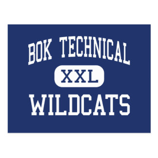 Bok Technical - Wildcats - High - Philadelphia Postcards