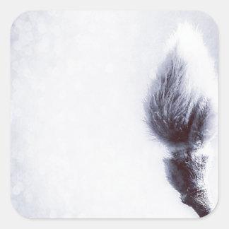 Bokeh Catkin kitten print winter Square Sticker