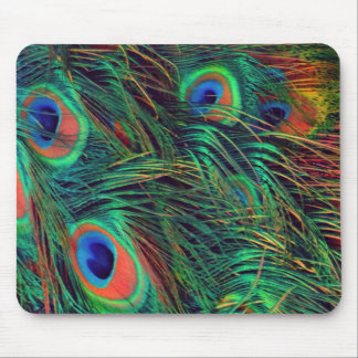 Bold and Rich Peacock Mouse Pad
