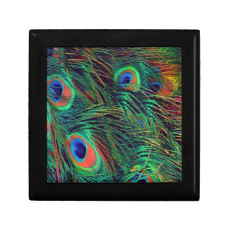 Bold and Rich Peacock Small Square Gift Box