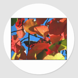 Bold Fall Leaves Round Sticker