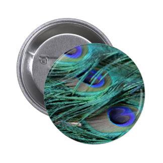 bold peafowl eyes 6 cm round badge