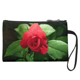 Bold Red Rose pops  on Clutch