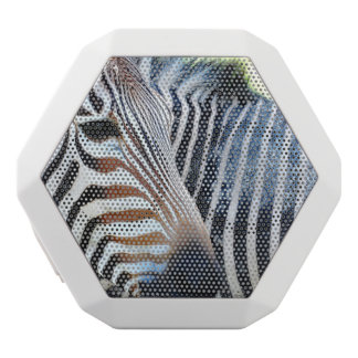 Bold Zebra White Boombot Rex Bluetooth Speaker