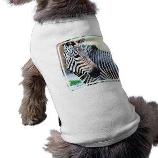 Bold Zebra Pet Shirt