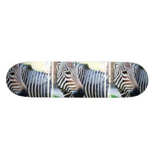 Bold Zebra Skateboard