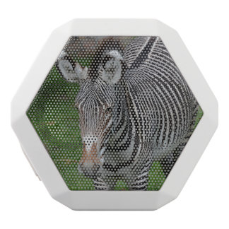 Bold Zebra Stripes White Boombot Rex Bluetooth Speaker
