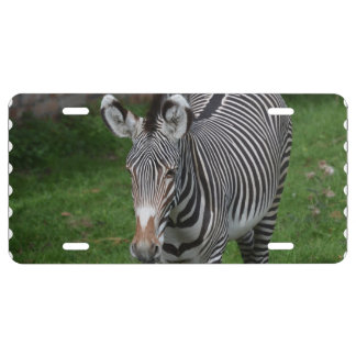 Bold Zebra Stripes License Plate