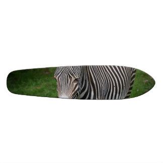 Bold Zebra Stripes Skate Board Deck