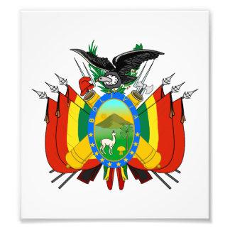 Bolivia Coat Of Arms Photo Art