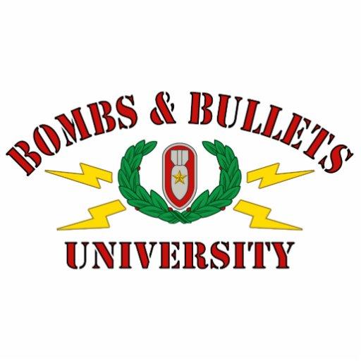 Bombs & Bullets University Photo Sculptures