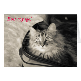Bon voyage card with cat.