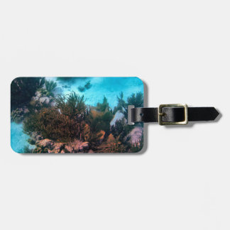 Bonairean Reef Personalized Luggage Tag