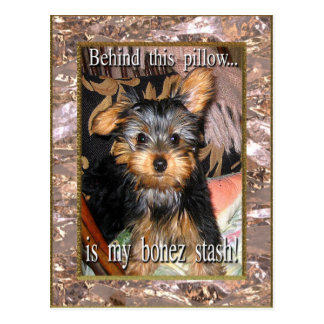 Bone Stash Yorkie Postcard