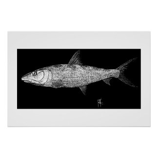 Bonefish Scratch art Poster