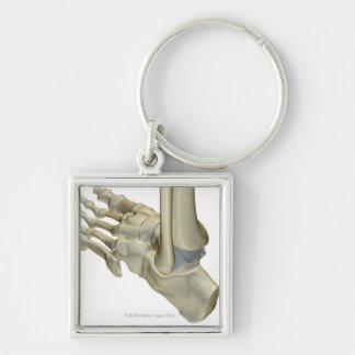 Bones of the Foot Key Ring