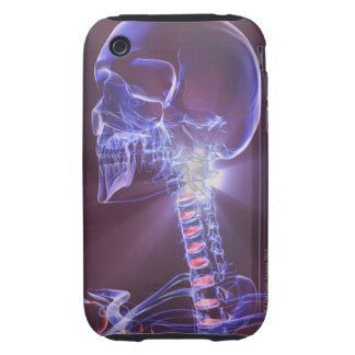 Bones of the Head and Neck 4 iPhone 3 Tough Covers