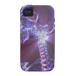 Bones of the Head and Neck 4 Vibe iPhone 4 Covers