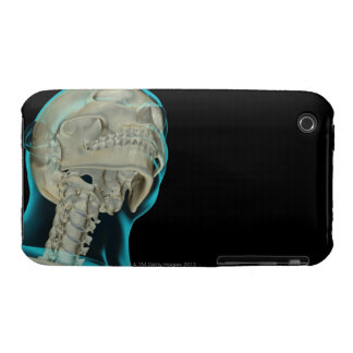 Bones of the Head and Neck 5 iPhone 3 Case-Mate Case
