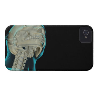 Bones of the Head and Neck 5 iPhone 4 Covers