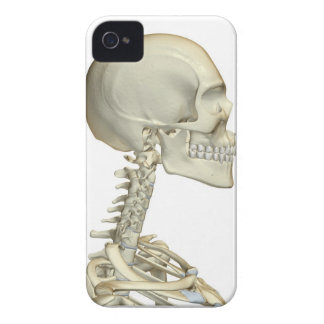 Bones of the Head and Neck 6 iPhone 4 Case-Mate Cases