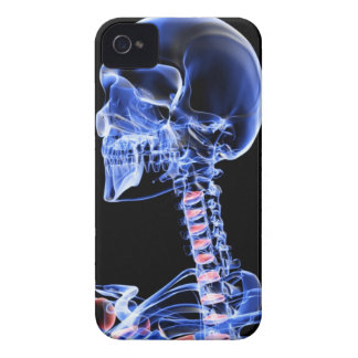 Bones of the Head and Neck 7 Case-Mate iPhone 4 Case