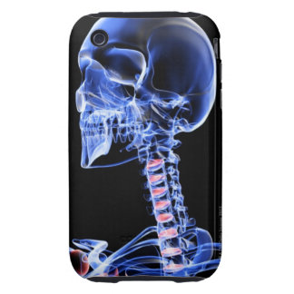 Bones of the Head and Neck 7 iPhone 3 Tough Covers