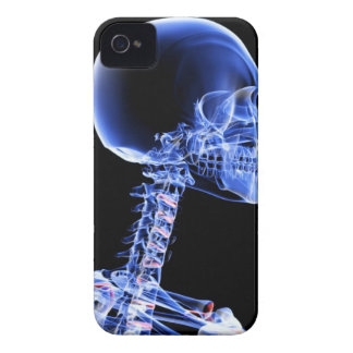 Bones of the Head and Neck iPhone 4 Cover