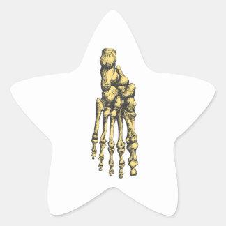 Bones of the human foor. sticker