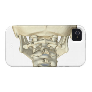 Bones of the Neck 4 Case-Mate iPhone 4 Covers