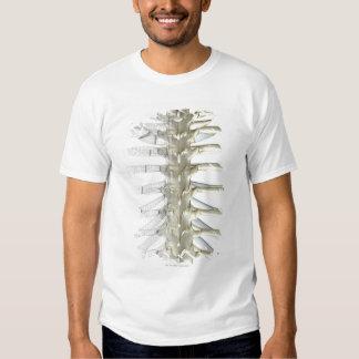 Bones of the Thoracic Vertebrae 2 Shirts