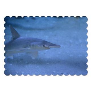 Bonnethead Shark 13 Cm X 18 Cm Invitation Card