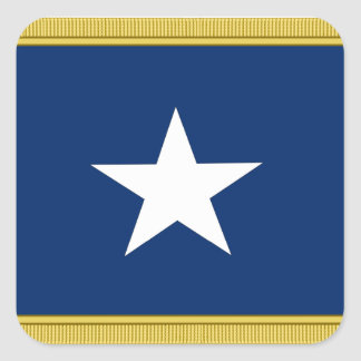 Bonnie Blue Flag First Texas Cofederate Volunteers Square Sticker