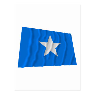 Bonnie Blue Flag / West Florida Republic Flag Postcard