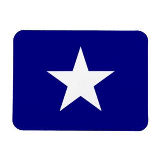 Bonnie Blue Flag White Star Magnet
