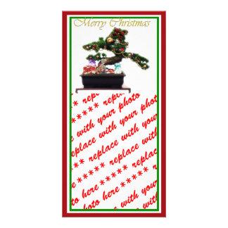 Bonsai Christmas Tree Photo Greeting Card