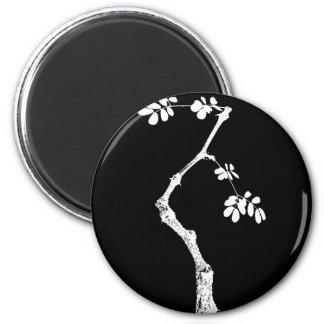 Bonsai Magnet