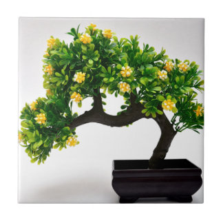 Bonsai tree ceramic tile