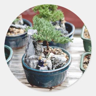 Bonsai Tree Classic Round Sticker