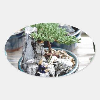 Bonsai Tree Oval Sticker