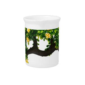 Bonsai tree pitcher