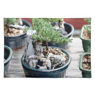 Bonsai Tree Placemat