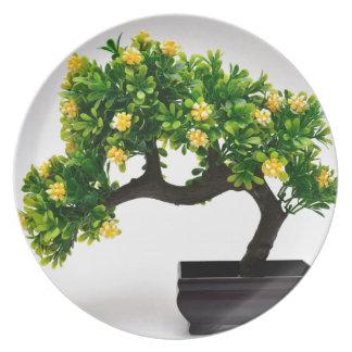 Bonsai tree plate