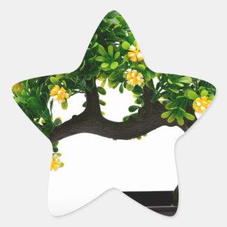 Bonsai tree star sticker