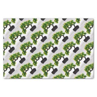 Bonsai tree tissue paper