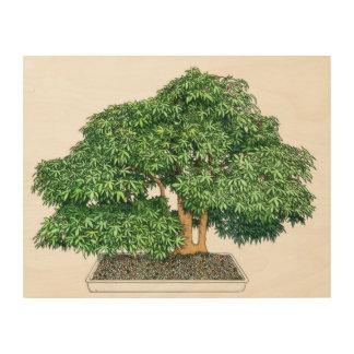Bonzai tree wood canvas